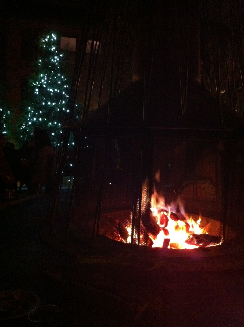 the firepit and a non-christmas tree